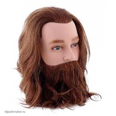 Учебная голова мужская Sibel из натуральных волос 20-25 см, шатен, с усами и бородой